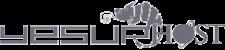 yesup-hosting-logo grey